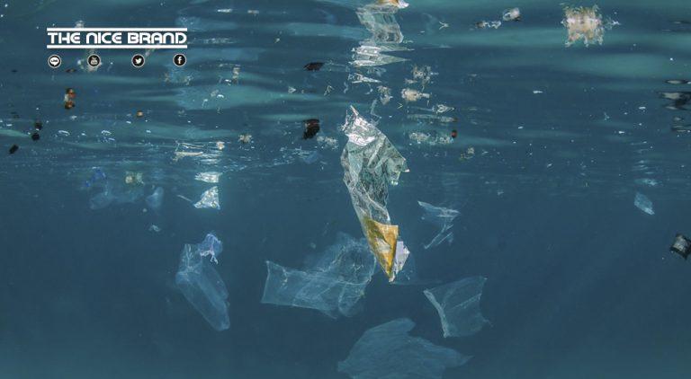 กรีนพีซเดินหน้าตรวจสอบแบรนด์ขยะพลาสติก