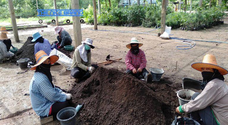ซีพีเอฟ จ้างงานชุมชน สร้างอาชีพ เสริมรายได้